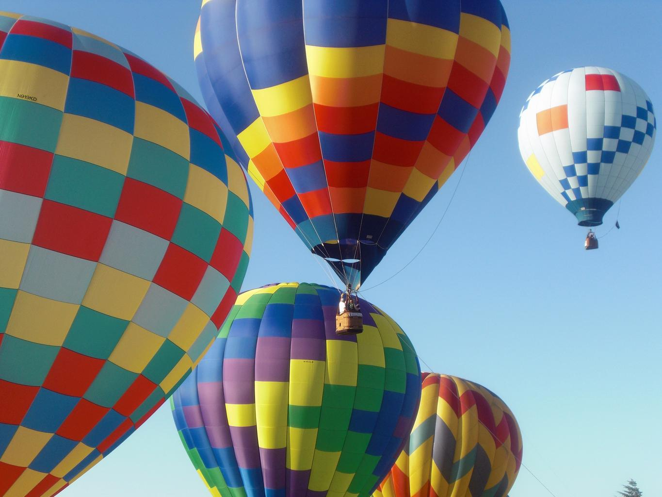 hot air ballons picture used for team management